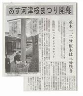 あす河津桜まつり開幕_JALAN_190209.jpg
