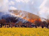 大室山 山焼き.jpg