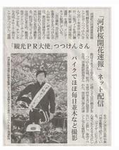河津桜ネット配信_JALAN_190223.jpg