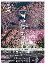 河津桜1_JALAN_200205.jpg