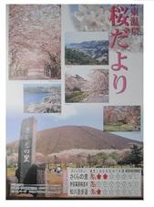 さくら便り_JALAN_200323.jpg