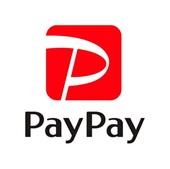 PayPayロゴマーク.jpg